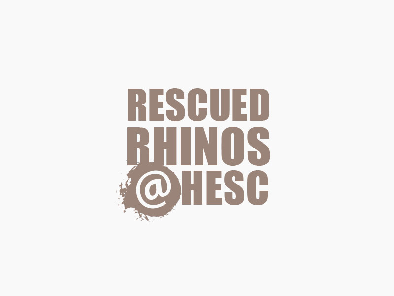 Rescued Rhinos at HESC