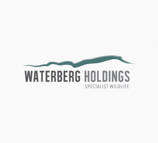 Waterberg Holdings Logo