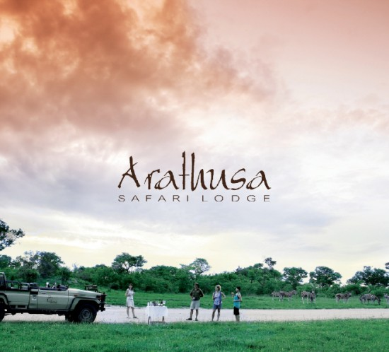 arathusa-cover